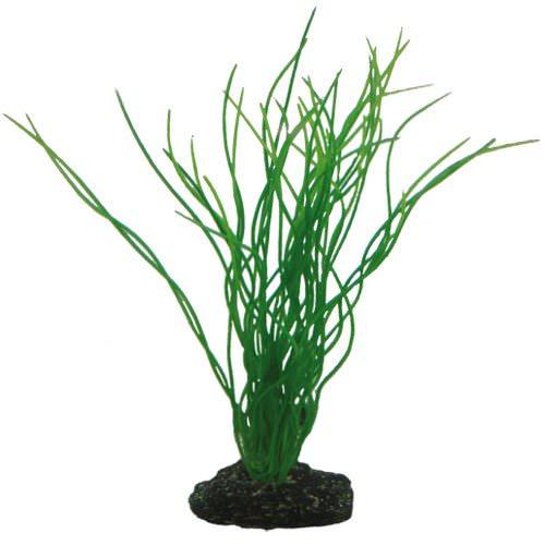 Hobby sagittaria 20cm plante artificielle pour aquarium for Aquariophilie en ligne