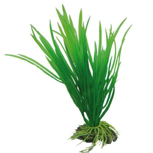 Hobby cyperus 16cm plante artificielle pour aquarium for Aquariophilie en ligne