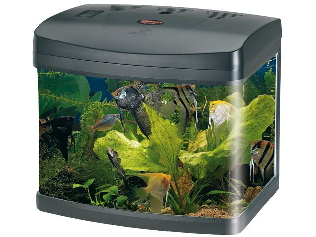 Nano aquarium wave x cube 40 tout quip de 40l avec ou for Aquarium en ligne