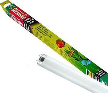 ARCADIA Freshwater tube T8 lumière du jour. Favorise la croissance des plantes et avive leurs couleurs. 7 longueurs aux choix