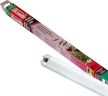 ARCADIA Original Tropical tube T8 stimulant la pousse des plantes et faisant ressortir la couleur des poissons. 7 longueurs aux choix