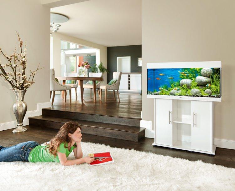 Aquarium JUWEL Rio 180 LED dim. 100 x 41 x 50 cm 180 Litres, coloris au choix...