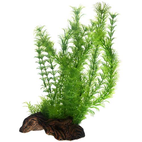 Hobby flora root 3 l plante artificielle sur support for Boutique aquariophilie