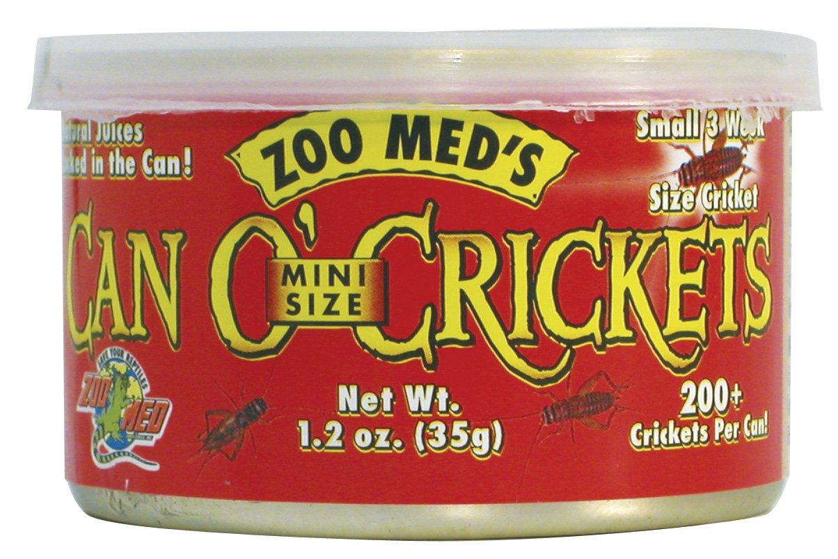ZOOMED Can O\' Cricket mini 35 grs grillons de petite taille pour lézards, tortues, poissons, oiseaux et petits animaux.