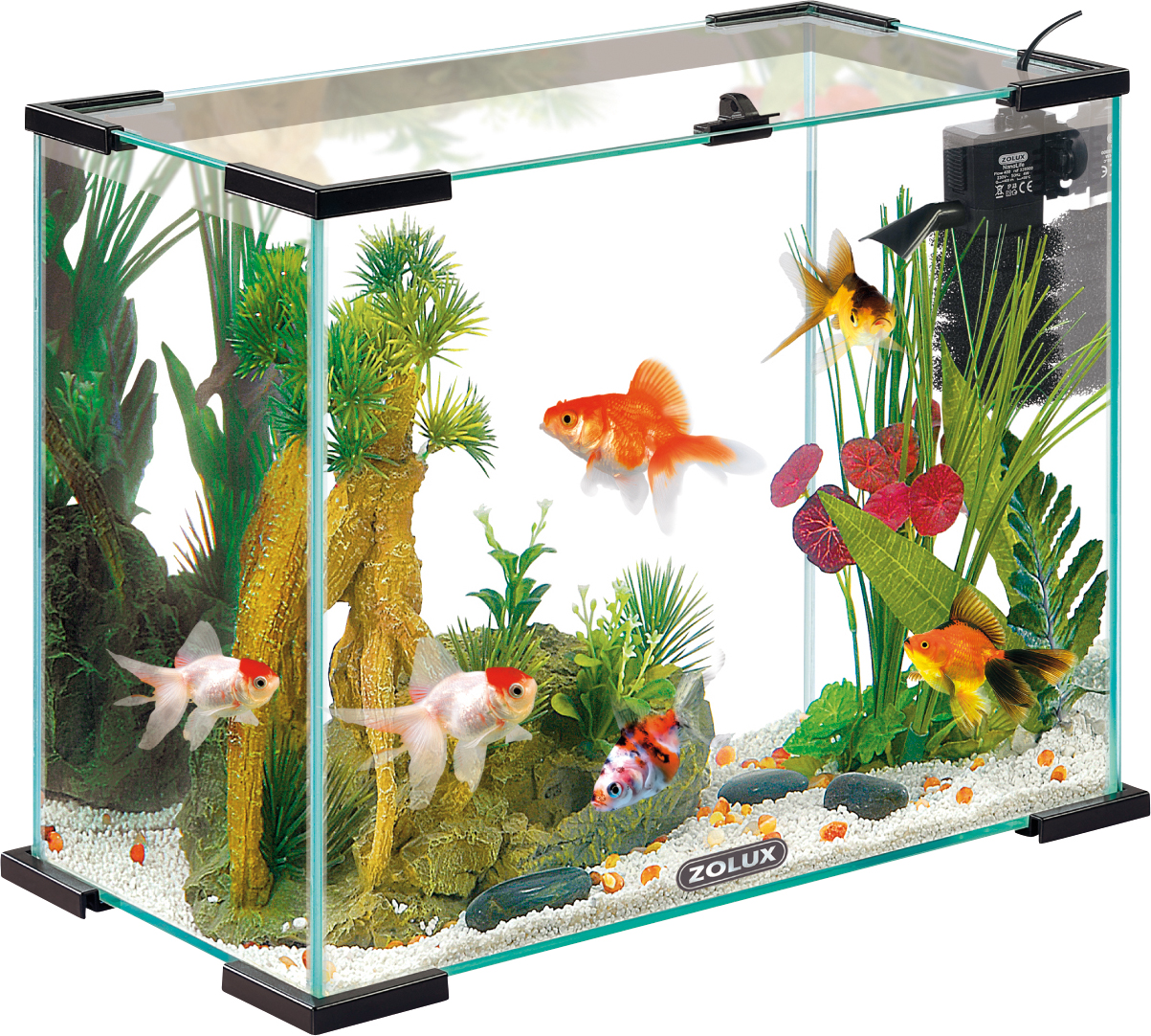 Nano aquarium zolux nanolife first 24 black volume 23 5l for Aquarium zolux