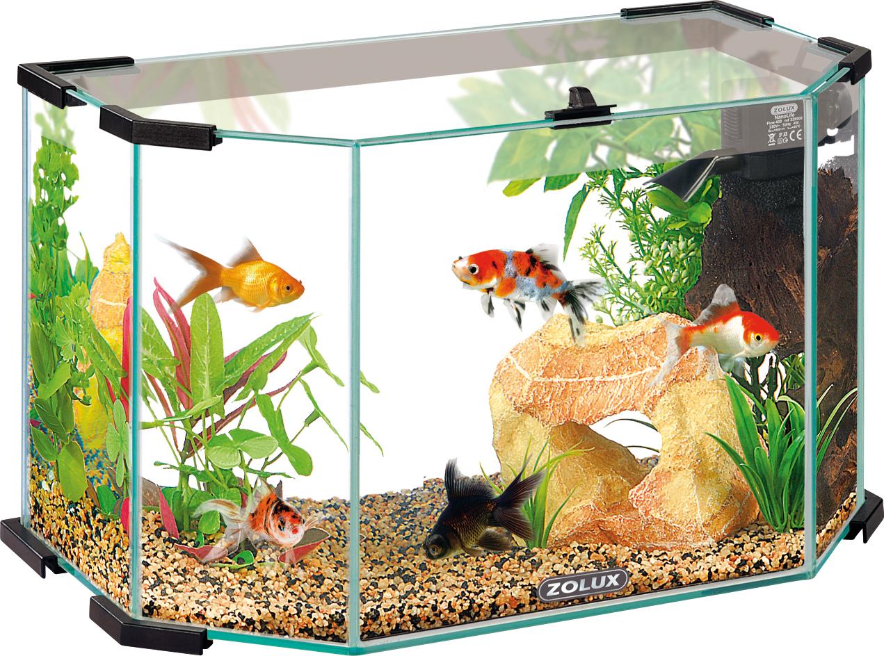 Accessoires aquarium zolux for Aquarium zolux