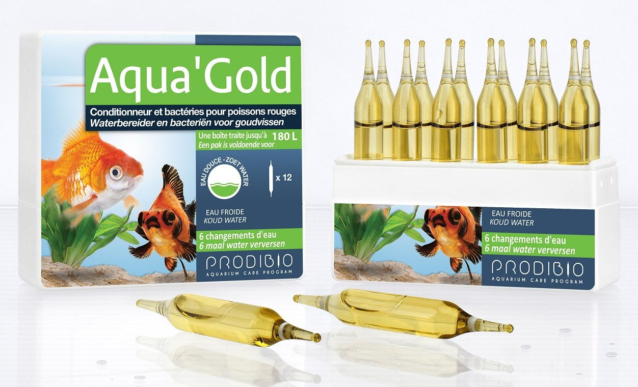 PRODIBIO Aqua'Gold 12 ampoules conditionneur d\'eau avec bactéries vivantes pour aquarium avec poissons rouges