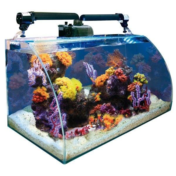 Nano aquarium wave box vision 60 marine avec vitre avant for Aquarium nano marin