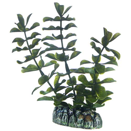 HOBBY Bacopa 13 cm plante artificielle pour aquarium