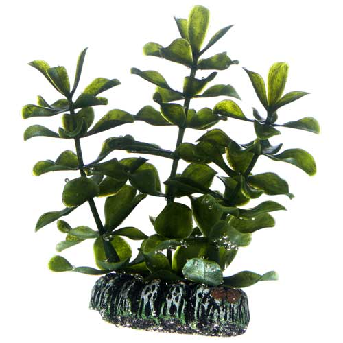 HOBBY Bacopa 7 cm plante artificielle pour aquarium