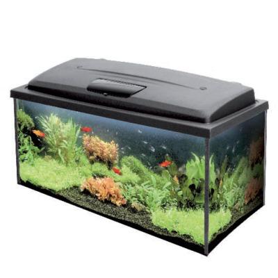 Aquarium tout equip aqua4family 80 x 35 x 40 cm 112l for Aquarium en ligne