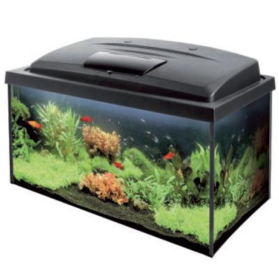 Aquarium tout equip aqua 4start 60 x 30 x 30 cm 54l avec for Aquarium vente en ligne