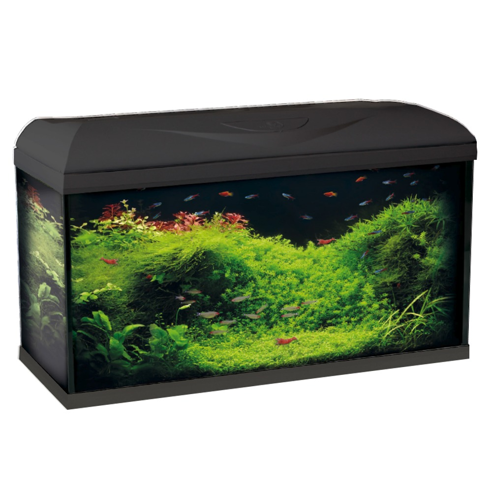aquarium quip wave riviera 80 led noir 95l dimensions 80 x 32 x 45 cm avec ou sans meuble. Black Bedroom Furniture Sets. Home Design Ideas