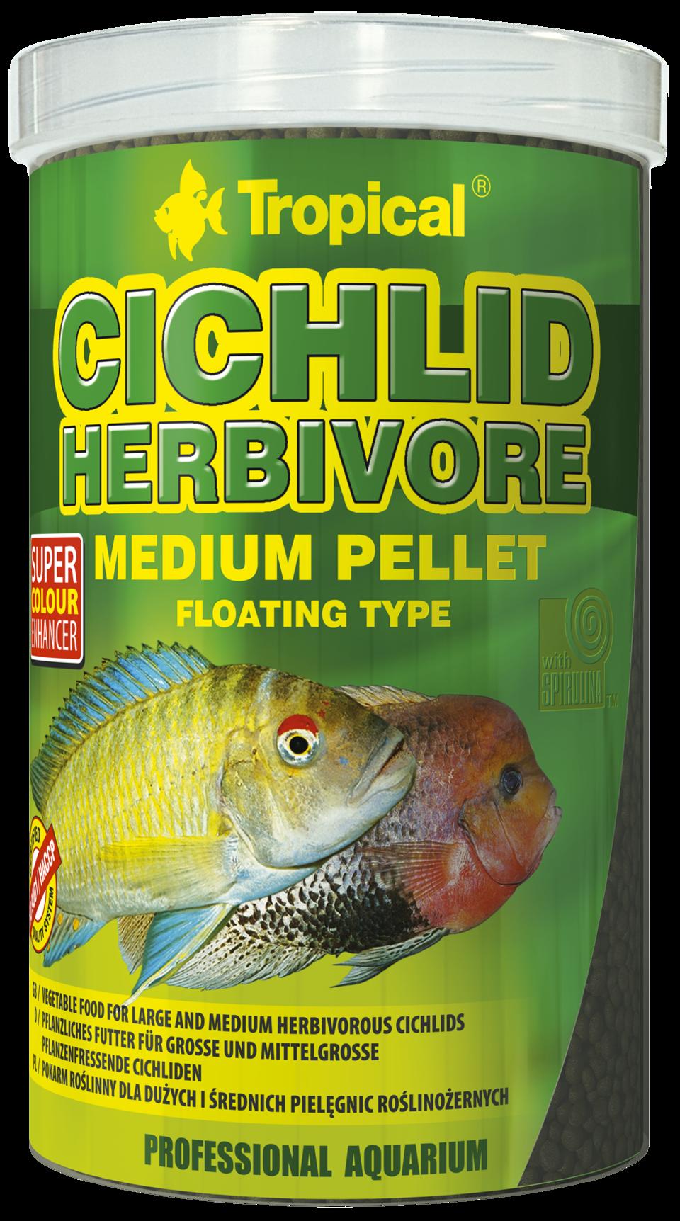 csm_cichlid-herbivore-medium_1000_bc8304ecc0