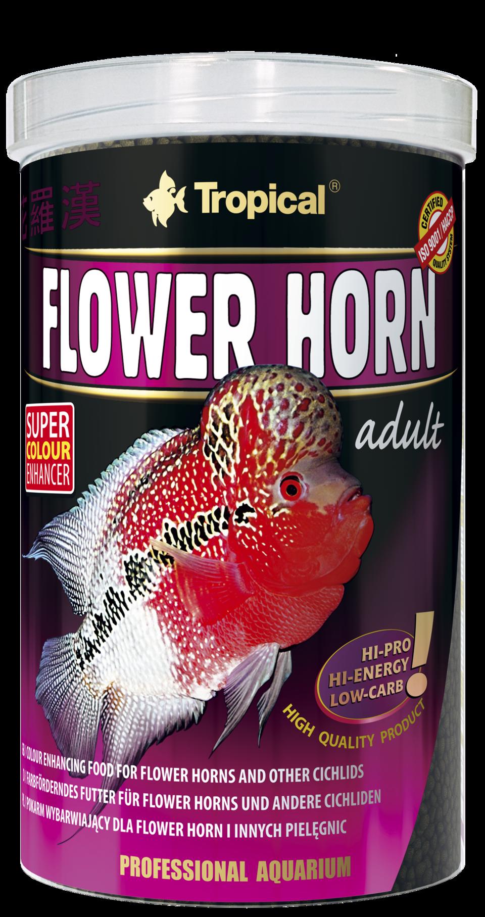 csm_flower-horn-adult_1000_b951ca5d9b