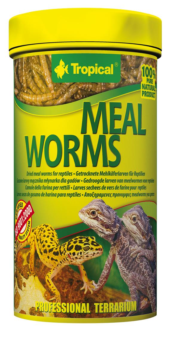 MEAL-WORMS_250ml_Y