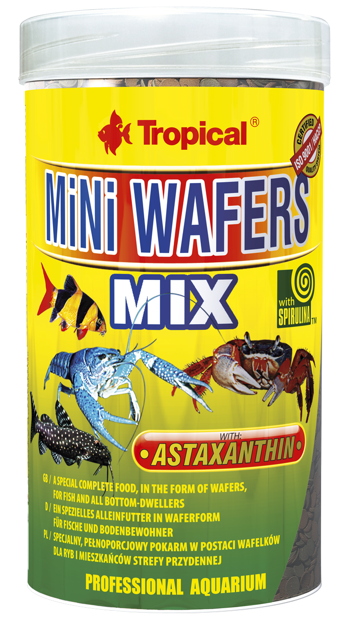 mini-wafers-mix_250