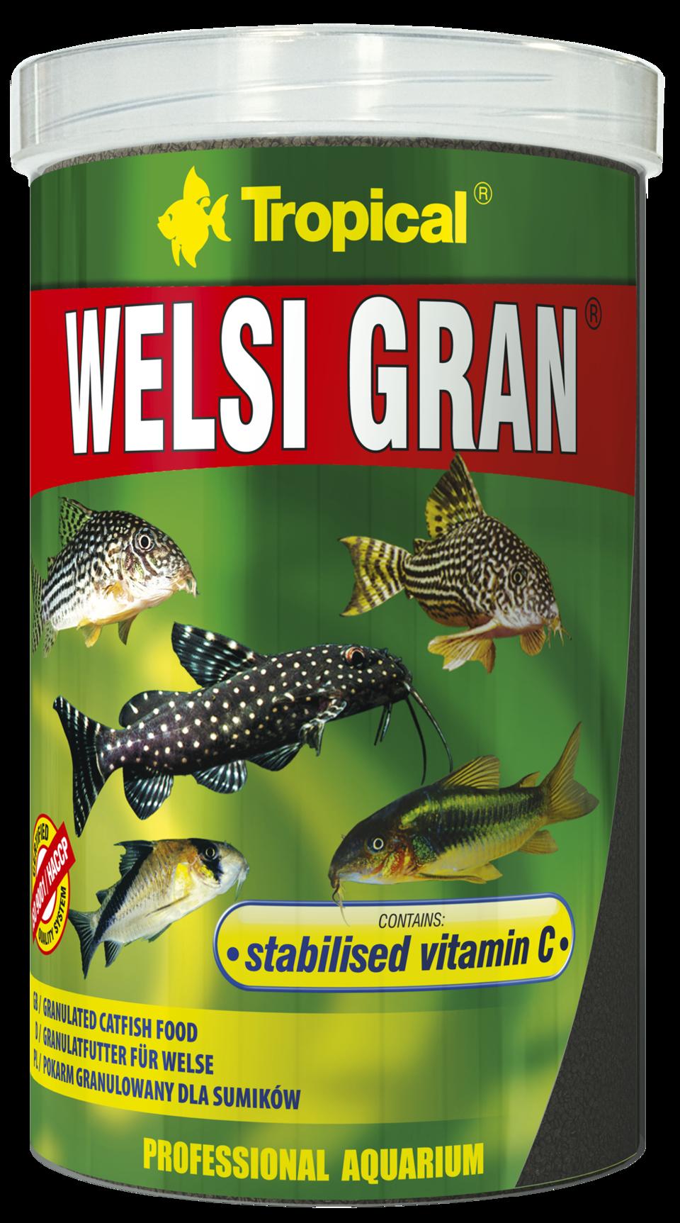 csm_welsi-gran_1000_1a187bb9d2
