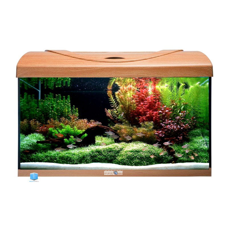 Aquavie startup 60 h tre aquarium de 54l tout quip 60 x for Boutique aquariophilie