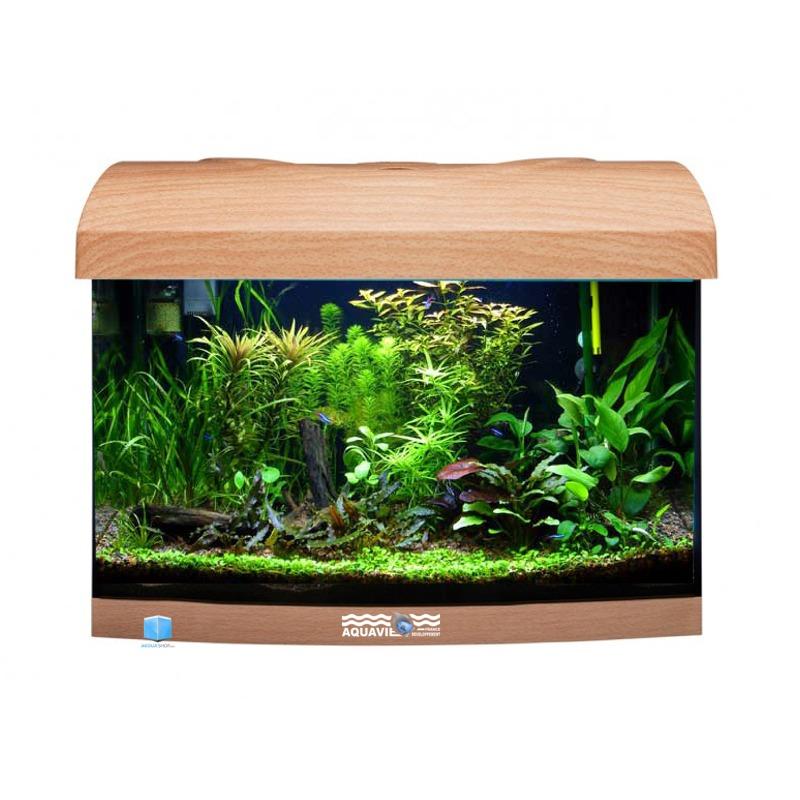 AQUAVIE StartUp 40B Hêtre aquarium 25L avec vitre avant bombé, tout équipé, 40 x 25 x 25 cm. Finition Haute gamme !