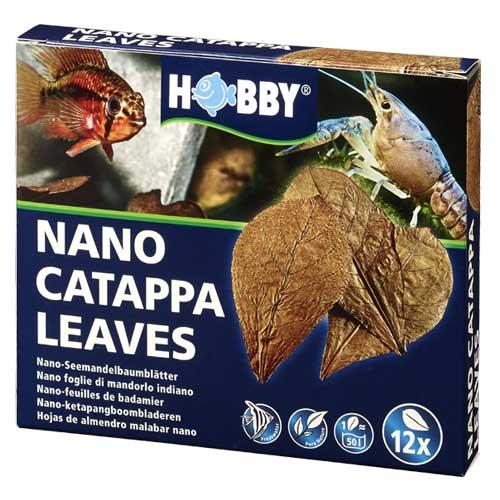 hobby-nano-catappa