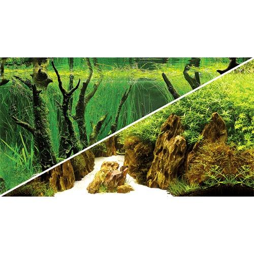 Poster de fond prédécoupé Canyon / Woodland 100 x 50 cm pour aquarium. Imprimé sur deux faces