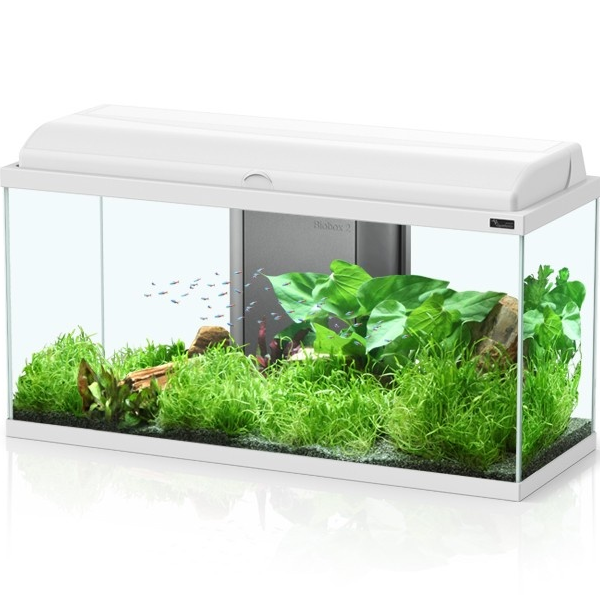 aquarium aquatlantis aquadream 80 tout quip 90 l coloris noir ou blanc avec ou sans meuble. Black Bedroom Furniture Sets. Home Design Ideas