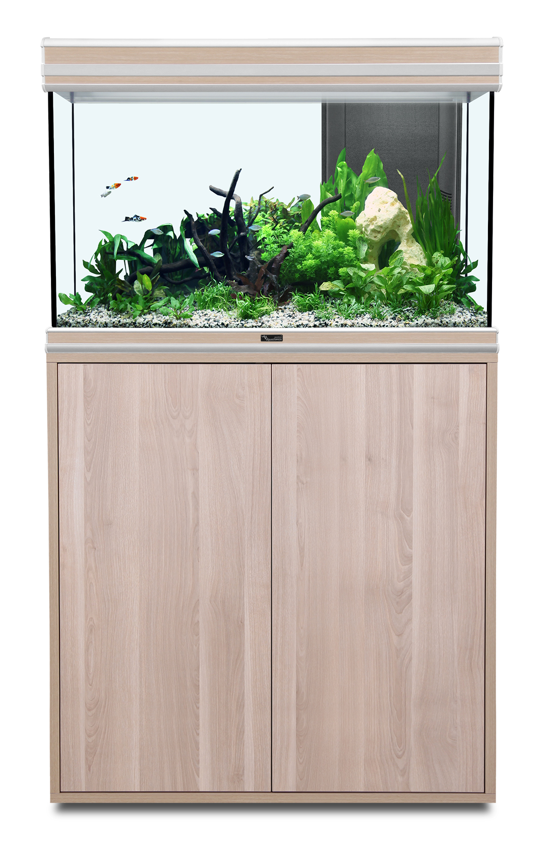 aquarium aquatlantis fusion 80 tout quip clairage leds 176 l vendu avec ou sans meuble 4. Black Bedroom Furniture Sets. Home Design Ideas