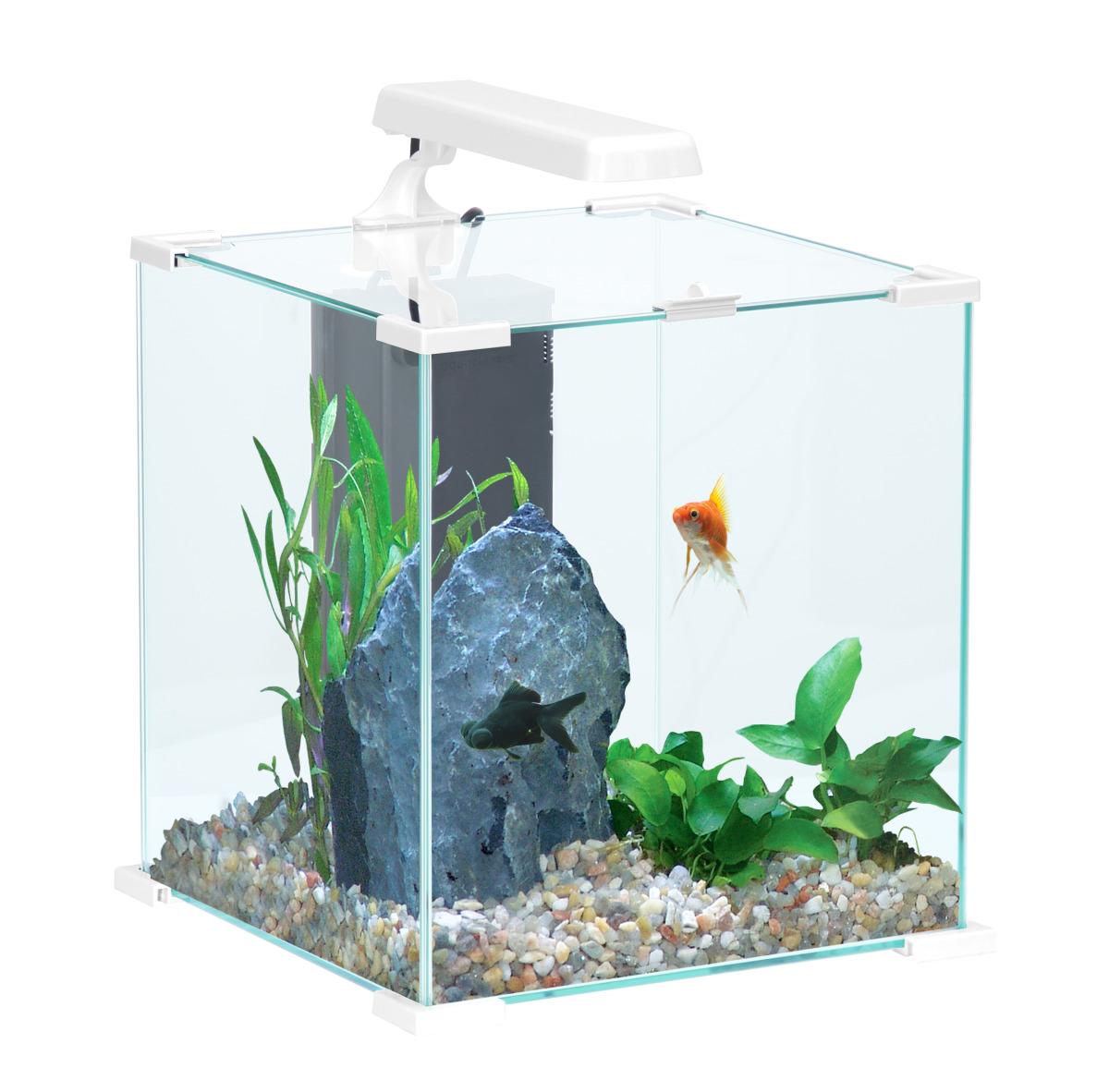 Zolux aqua nanolife cube 20 blanc nano aquarium 22 l tout for Aquarium zolux
