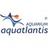 Aquatlantis acc.