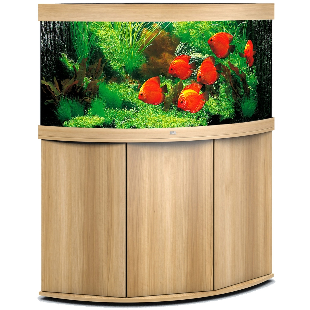 aquarium juwel trigon 350 led dim 123 x 87 x 65 cm 350l coloris au choix avec ou sans meuble sbx. Black Bedroom Furniture Sets. Home Design Ideas