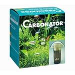 SÖCHTING Carbonator générateur de CO2 pour aquarium jusqu'à 250 L
