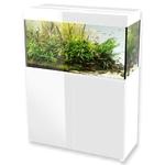 AQUAEL Glossy 100 Blanc laqué Aquarium 100 cm, volume 215 L et éclairage Leds
