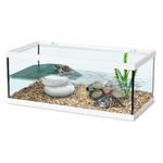 ZOLUX Aqua Tortum 40 Blanc aquaterrarium pour tortues aquatiques et amphibiens. Dimensions : 40 x 20 x 18 cm