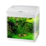 AQUAVIE NanoVie F3 19L nano-aquarium équipé 32 x 23 x 33,5 cm avec éclairage LEDs