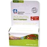 AQUARIUM MÜNSTER AquaVital BactoSprint 10 ml bactéries et enzymes pour démarrage et entretien de l'aquarium