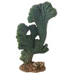 HOBBY Cactus Victoria 22 cm cactus artificielle pour la décoration de terrarium