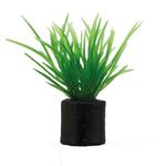 HOBBY Eleocharis mini 3 cm lot de 5 plantes artificielles idéales pour l'aquascaping