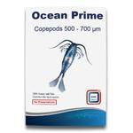 DVH IMPORT Ocean Prime Copepods 500 - 700 microns copépodes frais pour poissons d'eau douce, d'eau de mer et coraux