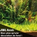 JBLManado25l