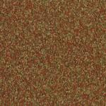 T800060_9631