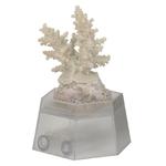 AQUA MEDIC Support de présentation pour corail et coquillage idéal pour les magasins, bourses, etc.