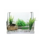 REPTILES PLANET Aqua Terra Over View 40 x 23 x 29 cm aquaterrarium en verre pour tortues d'eau