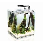 AQUAEL ShrimpSet Smart 10 V2 Noir nano-aquarium 10L tout équipé 20 x 20 x 25 cm