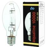 AQUA MEDIC aqualine 10000 ampoule HQL 175W 13000K culot E39