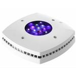 AI Prime HD White 55W rampe LEDs haute puissance pour l'éclairage des aquariums récifaux