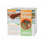 VELDA Algae Stop 500 gr anti-algues filamenteuses, mucilagineuses et contre l'eau verte pour bassin jusqu'à 10000 L