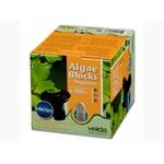 VELDA Algae Block + Dispenser 4 pastilles algicide anti-eau verte longue durée d'action avec diffuseur pour bassin jusqu'à 6000 L