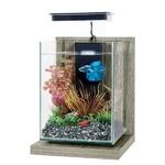 ZOLUX Wiha Zebrano Gris 4L kit nano-aquarium équipé avec éclairage LEDs