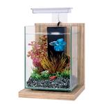 ZOLUX Wiha Bambou Beige 4L kit nano-aquarium équipé avec éclairage LEDs